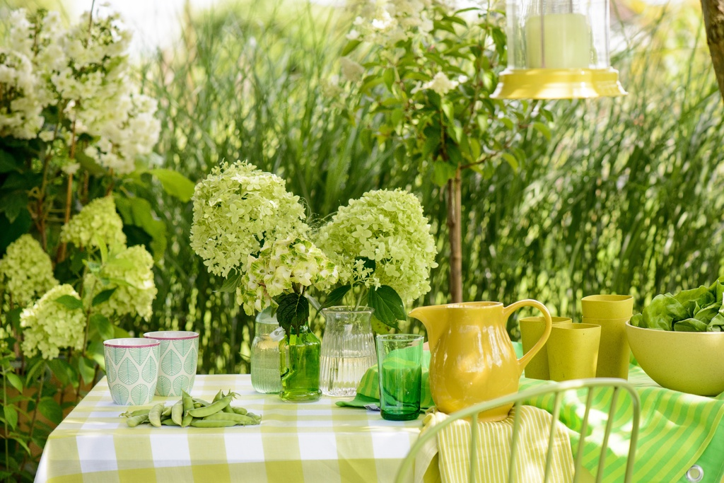 Die Hortensie Im Eleganten Garten Es Grunt So Grun Wenn