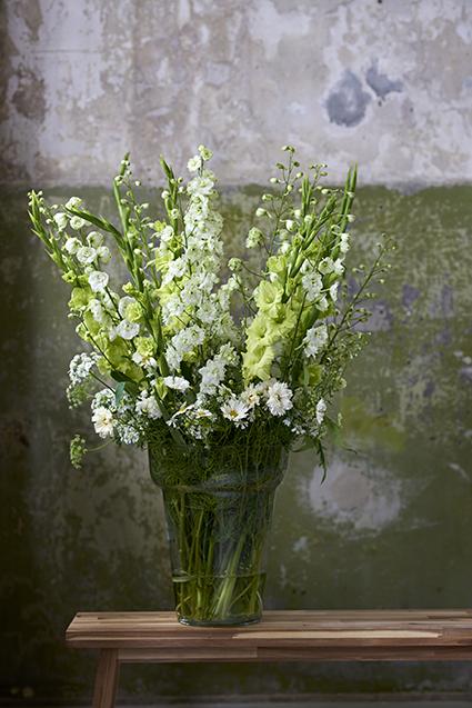 Beliebt Bevorzugt Blumen der Blumenagenda im August: Sommerblumen   Blumenbüro @SW_89