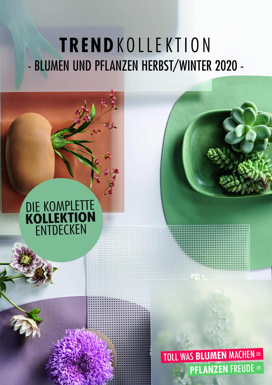 Trendkollektion Herbst/Winter 2020 positiv bewertet