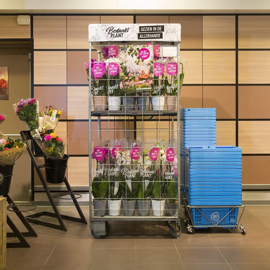 Shopper activatie AH Orchidee 2019